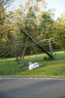 downed power line along side of road