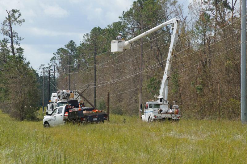 linemen in bucket trucks working on power poles by forest